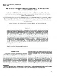 isolation of candida spp from vaginal microbiota of healthy ... - CiteSeerX
