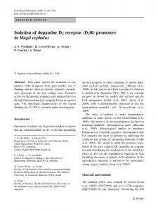 Isolation of dopamine D2 receptor (D2R) promoters in Mugil cephalus