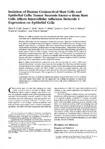 Isolation of Human Conjunctival Mast Cells and Epithelial Cells - IOVS