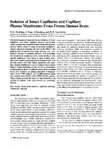 Isolation of intact capillaries and capillary ... - Wiley Online Library