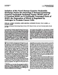 Isolation of the Novel Human Guanine Nucleotide Exchange Factor ...