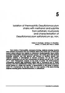Isolation of thermophilic Desulfotomaculum strains with ... - CiteSeerX