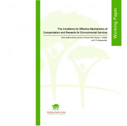 Issue Paper 3: The Conditions for Effective Mechanisms of ... - CiteSeerX