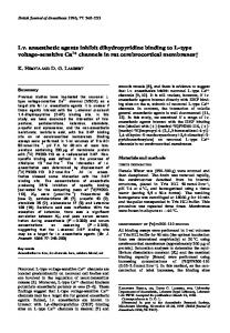 I.v. anaesthetic agents inhibit dihydropyridine binding to L-type voltage ...