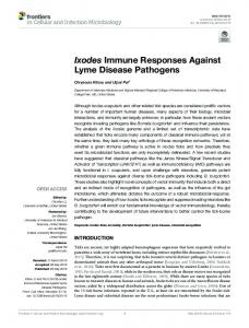 Ixodes Immune Responses Against Lyme Disease ...