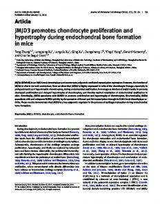 JMJD3 promotes chondrocyte proliferation and ... - Oxford Journals