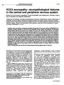 KCC3 axonopathy: neuropathological features in the central ... - Nature