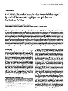 KCNQ Channels Control Action Potential