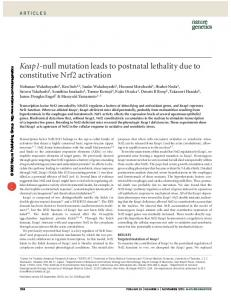 Keap1-null mutation leads to postnatal lethality due to ... - Nature