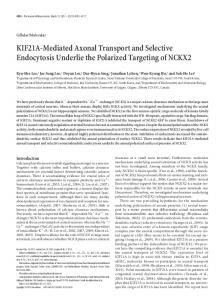 KIF21A-Mediated Axonal Transport and Selective Endocytosis ...