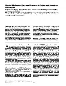 Kinesin-II Is Required for Axonal Transport of Choline ... - BioMedSearch