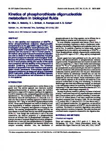 Kinetics of phosphorothioate oligonucleotide metabolism in ... - NCBI