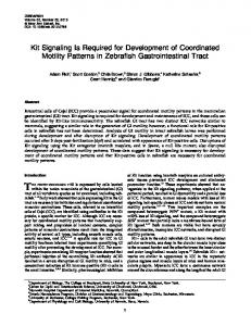Kit Signaling Is Required for Development of ...