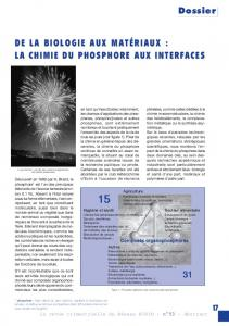 la chimie du phosphore aux interfaces