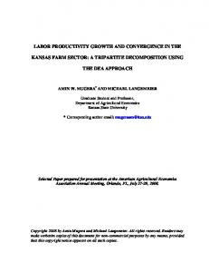 labor productivity growth and convergence in the ... - AgEcon Search