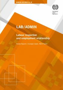 Labour inspection and employment relationship