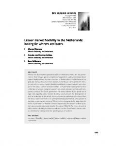 Labour market flexibility in the Netherlands: looking for ... - CiteSeerX