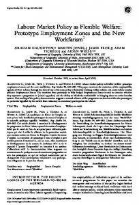 Labour Market Policy as Flexible Welfare: Prototype