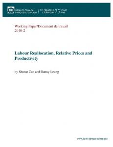Labour Reallocation, Relative Prices and Productivity