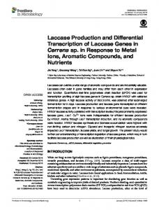 Laccase Production and Differential Transcription of ... - Frontiers