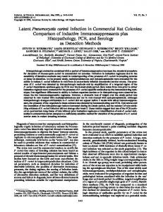 Latent Pneumocystis carinii Infection in Commercial Rat Colonies ...