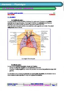 le systeme cardio vasculaire - infirmier