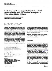 Lead, Zinc, Arsenic and Copper Pollution in the