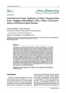 Leaf Assisted Green Synthesis of Silver Nanoparticles