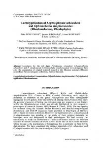 Lectotypification of Leptosiphonia schousboei and ... - BioOne