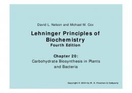 Lehninger Principles of Biochemistry Fourth Edition Chapter 20