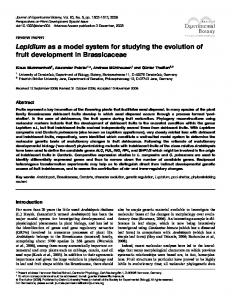 Lepidium as a model system for studying the ... - Oxford Journals
