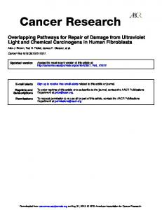 Light and Chemical Carcinogens in Human ...