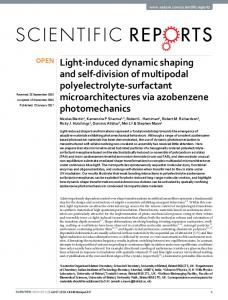 Light-induced dynamic shaping and self-division of