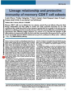 Lineage relationship and protective immunity of memory CD8 T cell