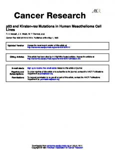Lines Mutations in Human Mesothelioma Cell ras p53 and Kirsten-