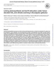 Linking photosynthesis and leaf N allocation under future elevated ...