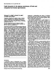 Lipid dynamics in the plasma membrane of fresh and cryopreserved ...