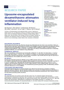 Liposomeencapsulated dexamethasone attenuates ... - RuG