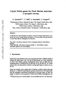 Liquid Noble gases for Dark Matter searches: a synoptic survey