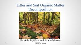Litter and Soil Organic Matter Decomposition - ctahr
