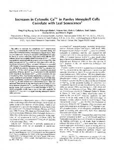lncreases in Cytosolic Ca2+ in Parsley Mesophyll ... - Plant Physiology