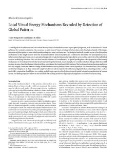 Local Visual Energy Mechanisms Revealed by Detection of Global