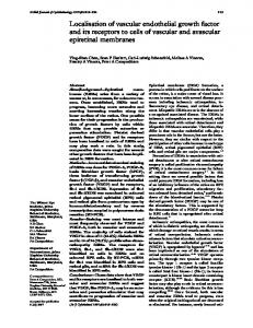 Localisation of vascular endothelial growth factor and its receptors to ...