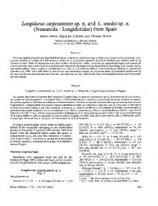 Longidorus carpetanensis sp. n. and L. unedoi sp. n ... - Core