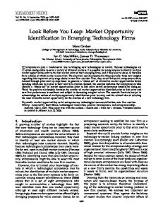 Look Before You Leap: Market Opportunity Identification in Emerging ...