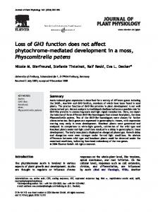 Loss of GH3 function does not affect phytochrome ... - Semantic Scholar