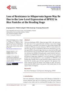Loss of Resistance to Nilaparvata lugens May Be Due to the Low ...