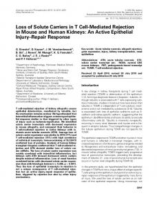 Loss of Solute Carriers in T CellMediated ... - Wiley Online Library