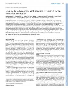 Lrp6-mediated canonical Wnt signaling is required for ... - Development
