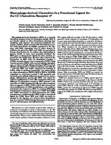 Macrophage-derived Chemokine Is a Functional Ligand for the CC ...